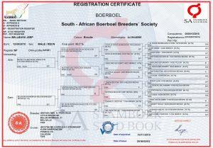SABBS Registration